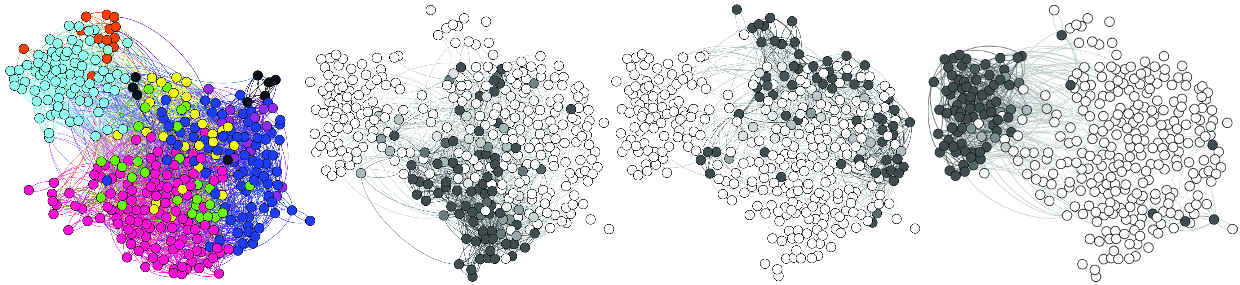 Networks of membership in four types of social communities for each node.